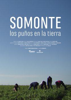 PORTADA SOMONTE
